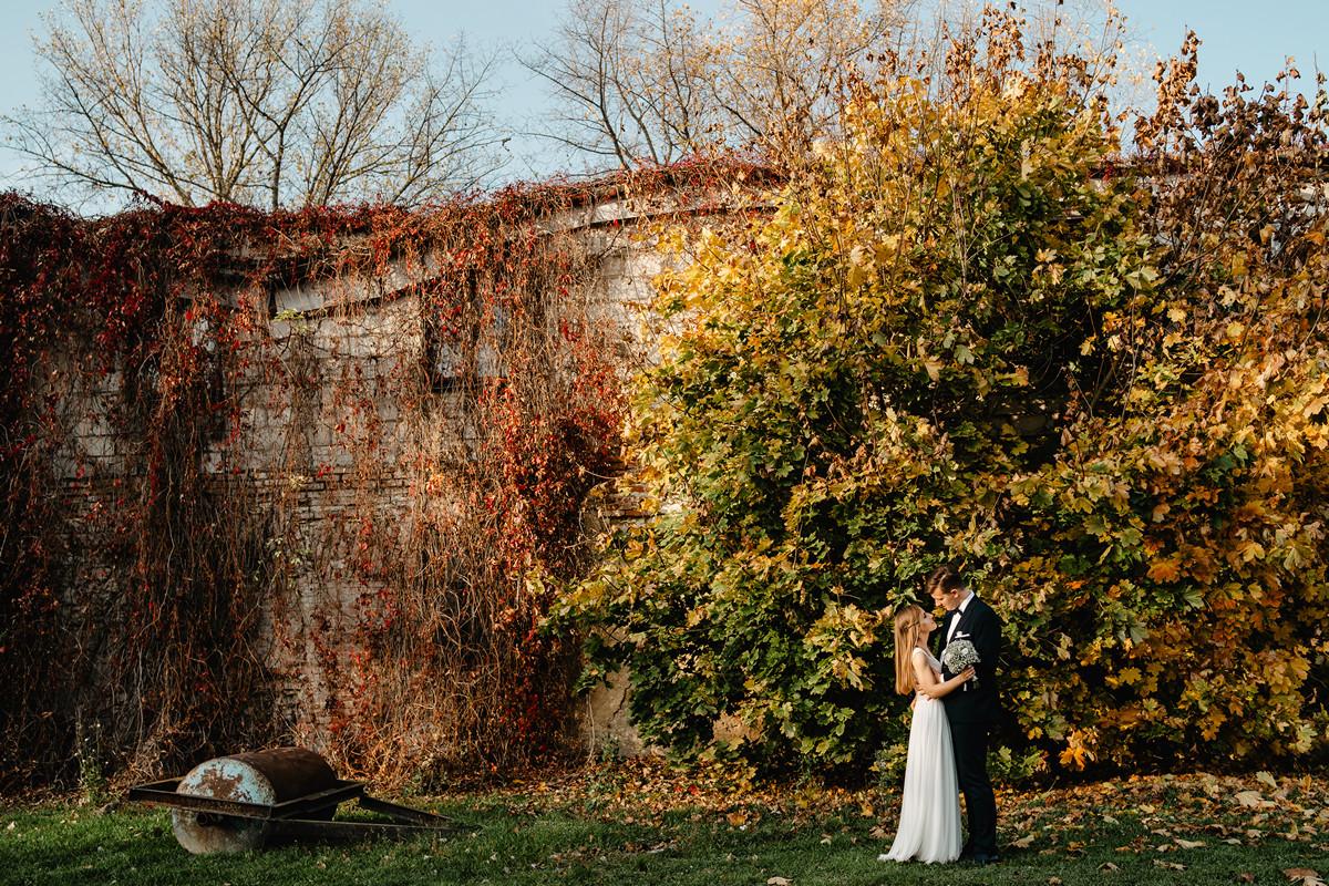 fotograf na ślub janów lubelski wesele hotel królewski 830